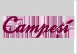 campesi-logos-principais-marcas-leon